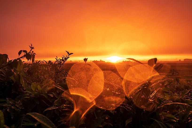 Zonsondergang na regen van Evert Jan Luchies