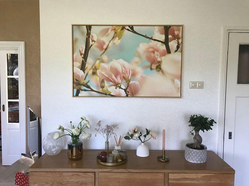 Photo de nos clients: Fleur de printemps magnolia 6 sur Joske Kempink, sur toile