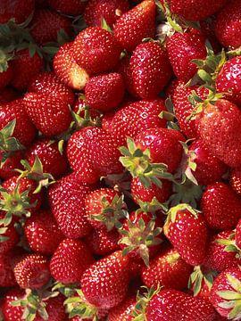 Aardbeien von marleen brauers