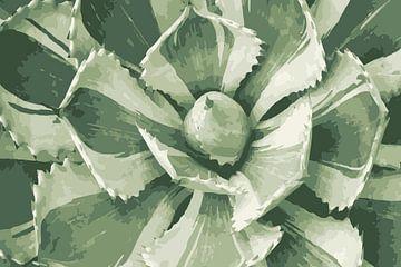 Vetplant in lichte tinten groen van Studio Maria Hylarides