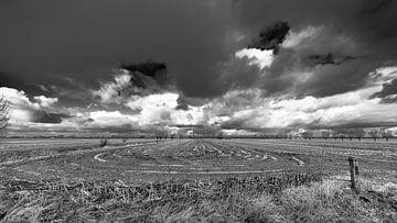 Das gepflügte Feld. von Tony Buijse