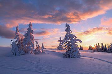 Winterlandschap met zonsondergang van Coen Weesjes