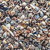 Veel kleine kunstwerken maken 1 grote  van Fotografie Jeronimo thumbnail