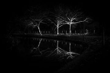 Bomen aan het water van mandy sakkers