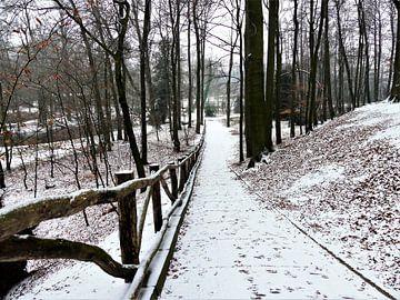 Sonsbeek park in Arnhem onder een dun laagje sneeuw van Petra Dielman