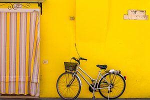 Geel, geel, geel