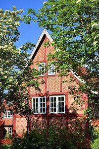 Timber-framed House in Luneburg