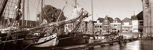 Haven Hoorn bruinevloot van