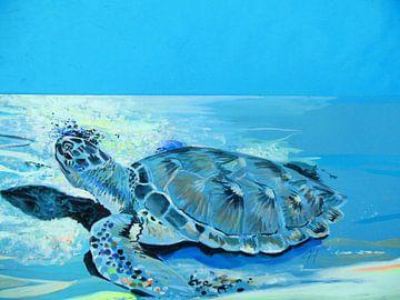 Turtle van Lucia Hoogervorst