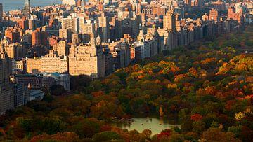 Herfstig Central Park van Freek van den Bergh