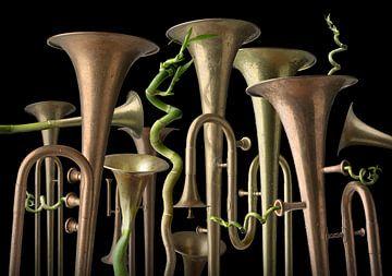 Trumpet Tree van Olaf Bruhn