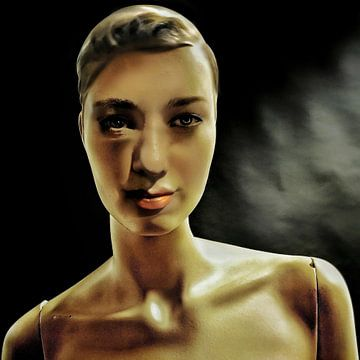 Humanoid van Ruben van Gogh