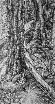 Schwarzweißer Naturwald von KB Prints