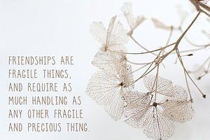 Inspirerende tekst over vriendschap van