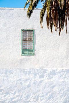 Pastellgrünes Fenster in tropischer Atmosphäre. von Pictorine