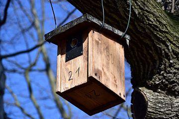 bird house van Marcel Ethner