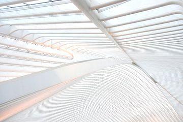 Het dak van Gare Guillemins te Luik