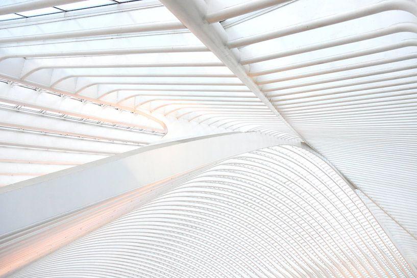 Het dak van Gare Guillemins te Luik van Ernst van Voorst