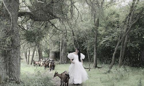 sneeuwwitje op bezoek bij de geitjes van