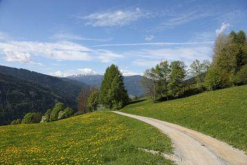 Steiermark van