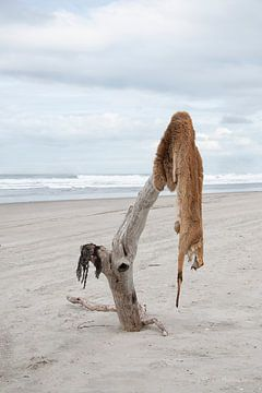 Drowned fur van Daisy Gilyamse