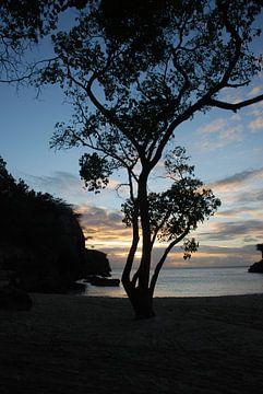 Zonsondergang op Playa Lagun van Carolina Vergoossen