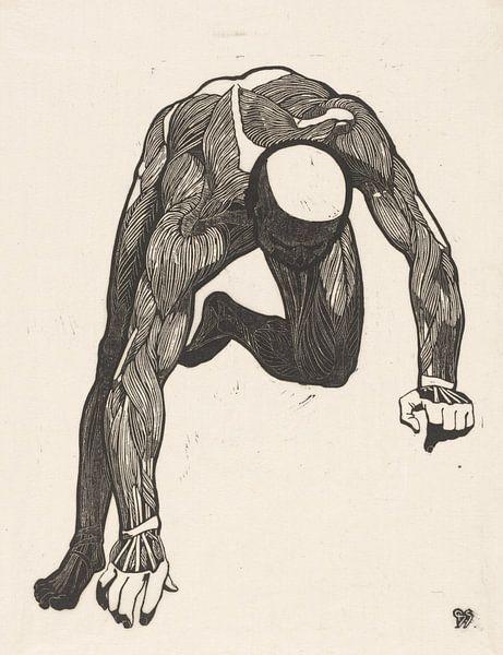 Reijer Stolk, Anatomische studie van de hals-, arm- en beenspieren van een man van Atelier Liesjes