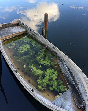 Verweesd bootje van Raoul Suermondt