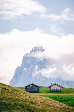 Seiser Alm / Seiser Alm - Südtirol (Italien) von Kirsten Bos