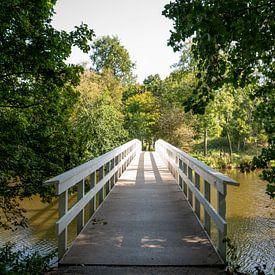Houten brug in Veldpark in Zaandam van Foto Amsterdam / Peter Bartelings