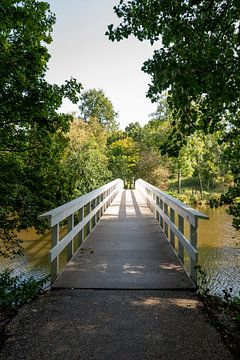 Veldpark in een park in Zaandam van Peter Bartelings Photography
