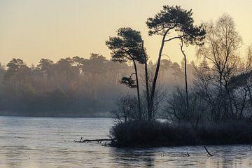 Mistige morgen Oisterwijk von Rob Bout