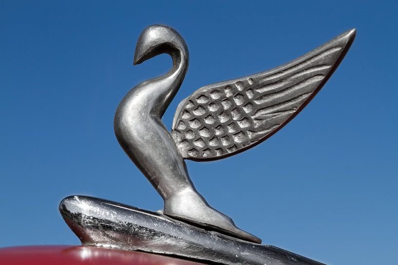 Packard Motorkap Zwaan Havana, Cuba van Jan van Dasler