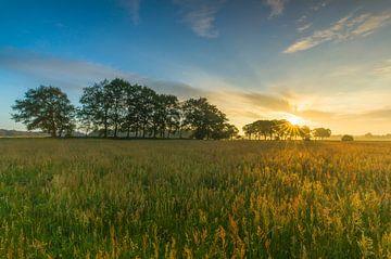 Dutch sunrise landscape von Marcel Kerdijk