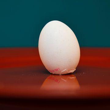 Het ei van Columbus van Georges Hoeberechts