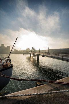 Rijnhaven Rotterdam met de Rijnhavenbrug sur Rob van der Teen