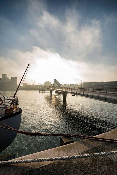 Rijnhaven Rotterdam met de Rijnhavenbrug van Rob van der Teen
