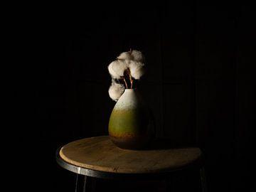 Baumwolle in einer grünen Vase von Maikel Brands