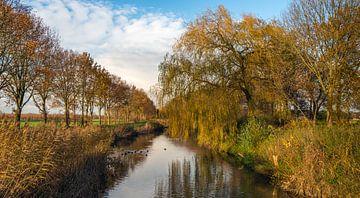 Smalle rivier in herfstseizoen van Ruud Morijn