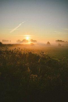 Sonnenaufgang bundesweit von Jisca Lucia