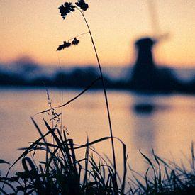 De nederlandse polder. van Bram van Kattenbroek