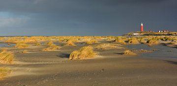 Duinen aan zuidkant Vuurtoren Texel von Ronald Timmer
