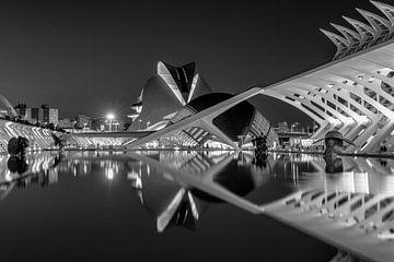 Stadt der Wissenschaften in Valencia von Rene Siebring