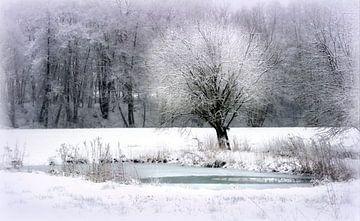 Winter am See van Vera Laake