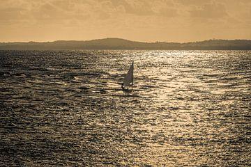 Zeilbootlaser in de Baai van Alle Heiligen in de stad van Salvador Brazil van Castro Sanderson