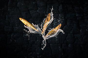 Stint, Juwelen aus dem Wattenmeer von Froukje Smith