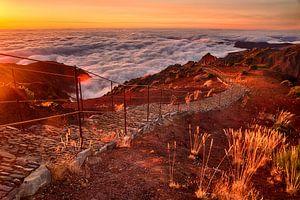 Zonsopgang boven de wolken, Pico Ruivo, Madeira