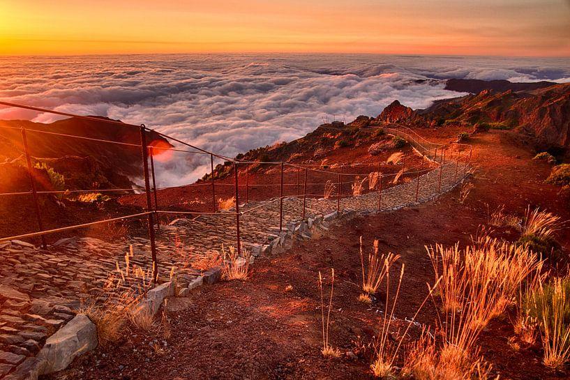 Zonsopgang boven de wolken, Pico Ruivo, Madeira van Sebastian Rollé - travel, nature & landscape photography