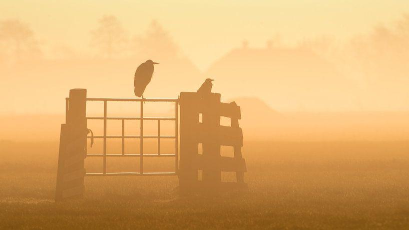 Een mistige zonsopgang van Erik Veldkamp