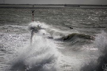 Storm van Linda Raaphorst